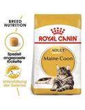 Main Coon  Royal Canin Main Coon