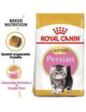 Persa  Royal Canin Persan Kitten
